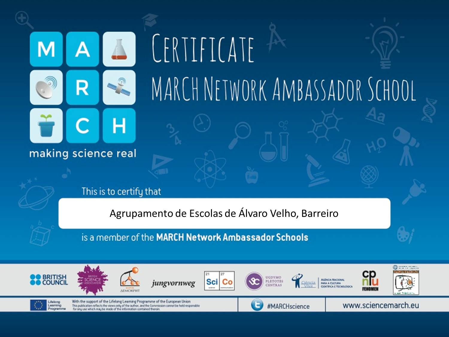 certificate march network ambassador school