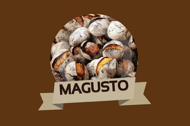 magusto