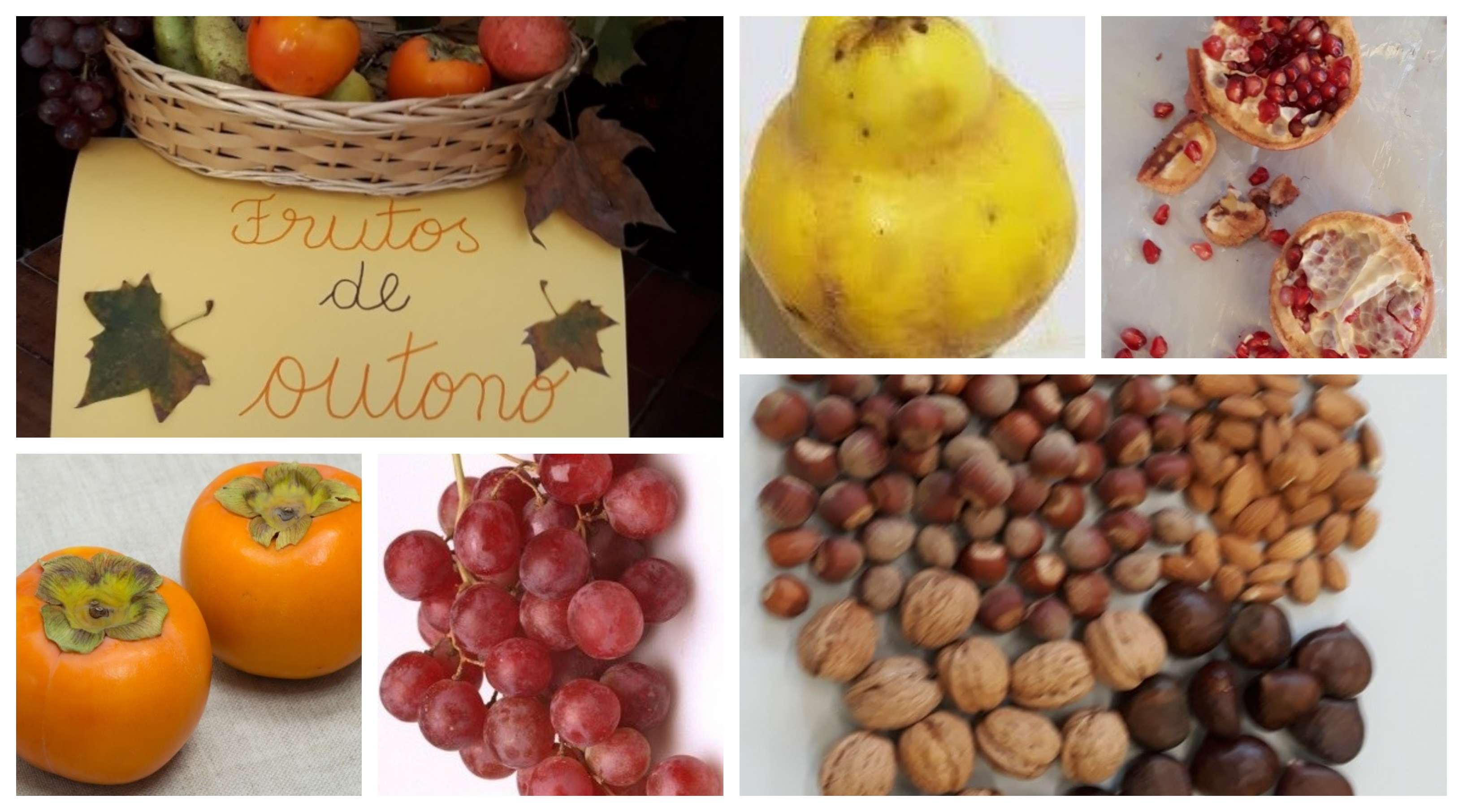 frutosdeoutono collage
